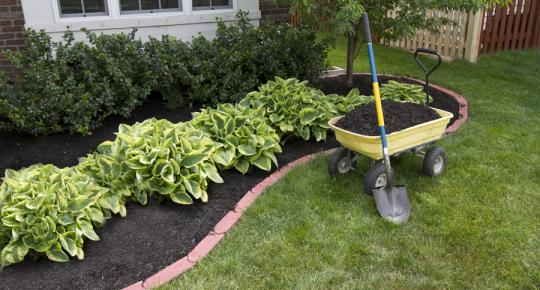 Sollecito Landscaping Nursery